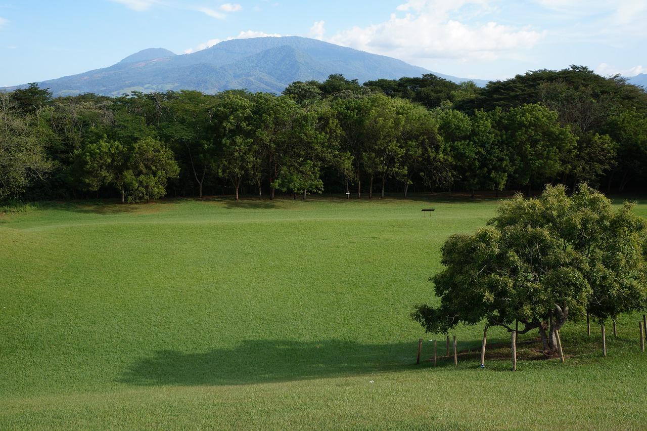 Día del Árbol en El Salvador